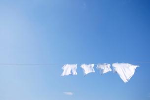 青空とまっ白な洗濯物の写真素材 [FYI02031055]