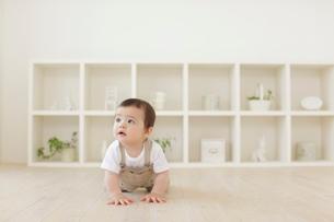 リビングでハイハイするハーフの赤ちゃんの写真素材 [FYI02031112]