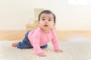 リビングでハイハイする赤ちゃんの写真素材 [FYI02031178]