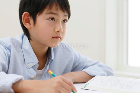 教室で勉強をする男の子の写真素材 [FYI02031215]