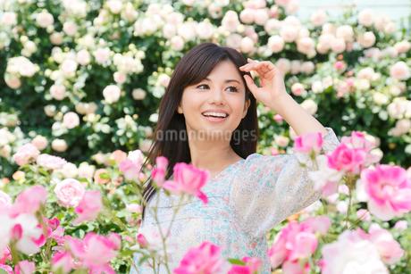 満開のローズガーデンで休日を楽しむ女性の写真素材 [FYI02031227]