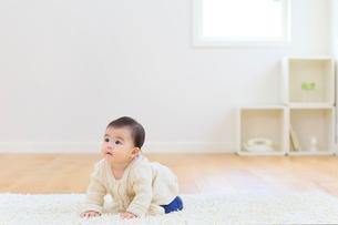 リビングでハイハイする赤ちゃんの写真素材 [FYI02031263]