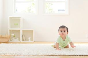 リビングでハイハイする赤ちゃんの写真素材 [FYI02031375]