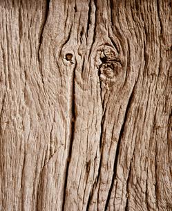 木目の写真素材 [FYI02031703]