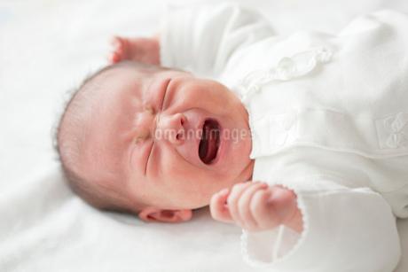 泣く赤ちゃんの写真素材 [FYI02031828]