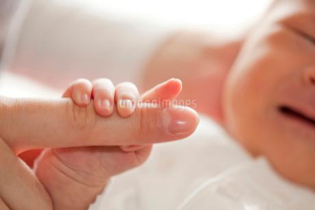母親の指をつかむ赤ちゃんの写真素材 [FYI02031944]