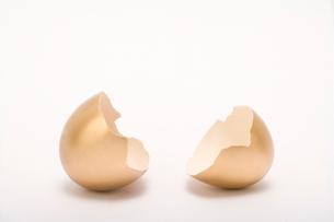 金の卵の殻の写真素材 [FYI02033021]