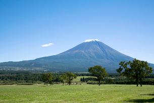 朝霧高原から見る富士山の写真素材 [FYI02033273]