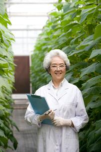 植物の観察をする女性研究者の写真素材 [FYI02035080]