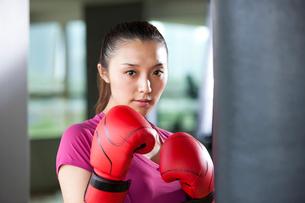 ボクシングをする若い女性の写真素材 [FYI02036241]
