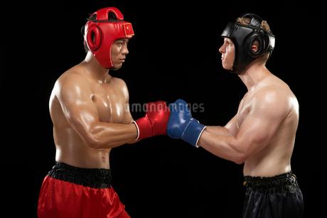 試合をするボクサーの写真素材 [FYI02036397]