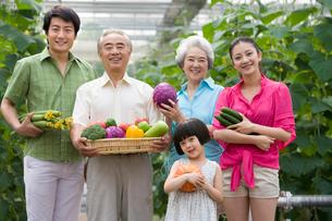 野菜の収穫をする3世代家族の写真素材 [FYI02037284]