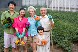 野菜の収穫をする3世代家族の写真素材 [FYI02037716]
