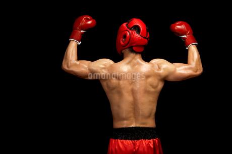 ガッツポーズをするボクサーの後姿の写真素材 [FYI02037786]