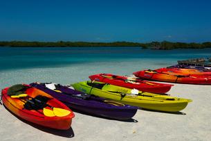 ビーチに並ぶカヌーの写真素材 [FYI02038939]