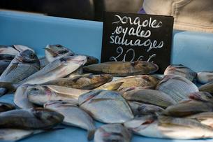 魚市場で売られているタイの写真素材 [FYI02040725]