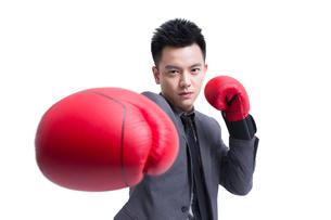 ボクシングをするビジネスマンの写真素材 [FYI02042611]