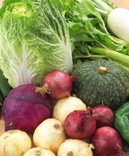 野菜集合の写真素材 [FYI02042784]