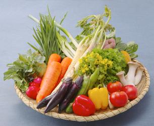 笊に盛った野菜集合の写真素材 [FYI02042828]