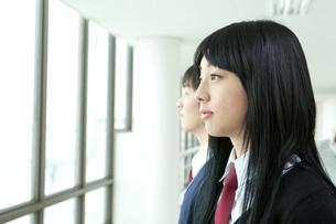 制服姿の学生横顔 男女2人の写真素材 [FYI02042974]
