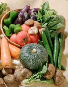 野菜集合の写真素材 [FYI02043005]