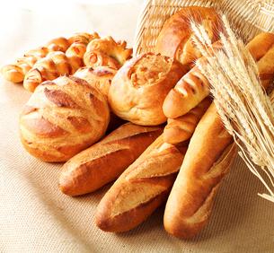 パン集合の写真素材 [FYI02043184]