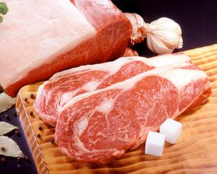 牛肉の写真素材 [FYI02043296]
