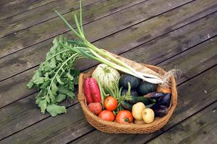 籠の中の野菜集合の写真素材 [FYI02043426]
