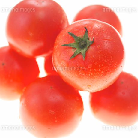 トマトの写真素材 [FYI02043443]