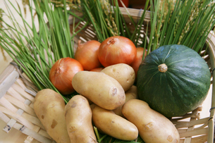 笊に盛った野菜集合の写真素材 [FYI02043464]
