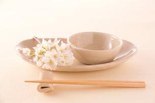 和食器と桜の花の写真素材 [FYI02043625]