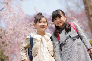 新入学の女の子2人と桜の写真素材 [FYI02043680]