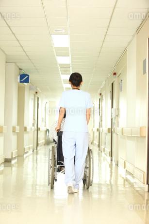 車椅子の患者と看護師後姿の写真素材 [FYI02043763]
