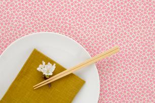 和食器と桜の花の写真素材 [FYI02043790]