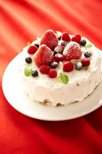 デコレーションケーキの写真素材 [FYI02043799]