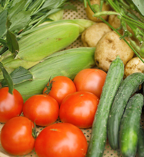 笊に盛った野菜集合の写真素材 [FYI02043898]
