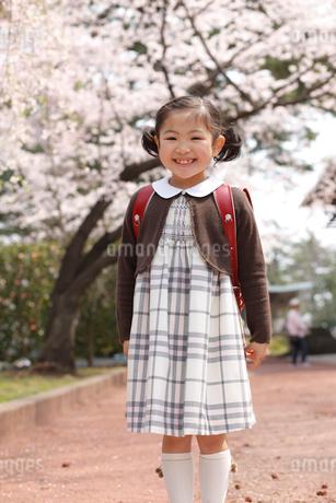 新入学の女の子と桜の写真素材 [FYI02044140]