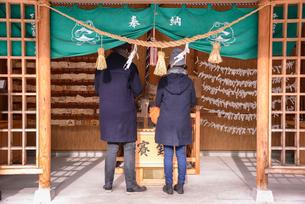 神社にお参りをするカップルの写真素材 [FYI02044334]