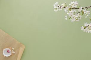 和紙と桜茶と桜の花の写真素材 [FYI02044790]