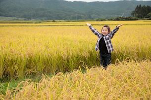 秋の田園と女の子の写真素材 [FYI02045404]