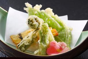 山菜の天ぷらの写真素材 [FYI02047189]
