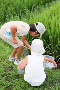 虫捕りをする2人の子供の写真素材 [FYI02047885]