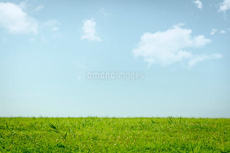 草原と青空に浮かぶ雲の写真素材 [FYI02047890]