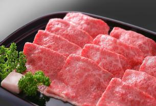 牛肉の写真素材 [FYI02048028]
