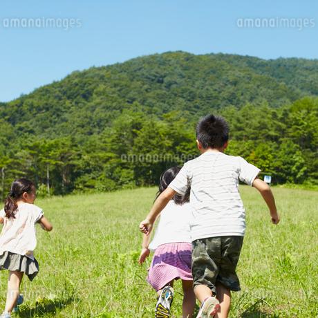 草原を走る3人の子供達の写真素材 [FYI02048307]