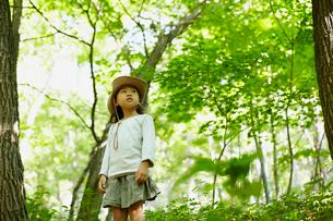 森林に佇む女の子の写真素材 [FYI02048360]