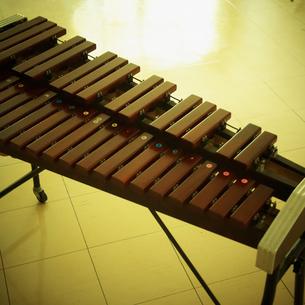 木琴の写真素材 [FYI02048803]