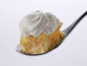 チーズケーキの写真素材 [FYI02048806]