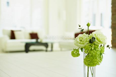 リビングルームに活けた花の写真素材 [FYI02049006]