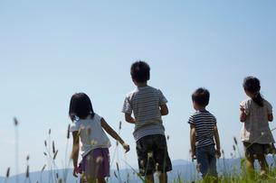 4人の子供達の後姿の写真素材 [FYI02049034]